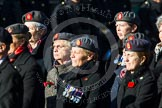 Remembrance Sunday at the Cenotaph in London 2014: Group B25 - Queen Alexandra's Royal Army Nursing Corps Association. Press stand opposite the Foreign Office building, Whitehall, London SW1, London, Greater London, United Kingdom, on 09 November 2014 at 12:11, image #1787