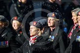 Remembrance Sunday at the Cenotaph in London 2014: Group B25 - Queen Alexandra's Royal Army Nursing Corps Association. Press stand opposite the Foreign Office building, Whitehall, London SW1, London, Greater London, United Kingdom, on 09 November 2014 at 12:11, image #1794
