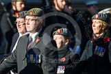 Remembrance Sunday at the Cenotaph in London 2014: Group B25 - Queen Alexandra's Royal Army Nursing Corps Association. Press stand opposite the Foreign Office building, Whitehall, London SW1, London, Greater London, United Kingdom, on 09 November 2014 at 12:11, image #1798