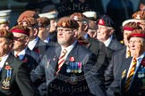 Remembrance Sunday at the Cenotaph in London 2014: Group B29 - Queen's Royal Hussars (The Queen's Own & Royal Irish). Press stand opposite the Foreign Office building, Whitehall, London SW1, London, Greater London, United Kingdom, on 09 November 2014 at 12:12, image #1842