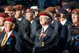 Remembrance Sunday at the Cenotaph in London 2014: Group B29 - Queen's Royal Hussars (The Queen's Own & Royal Irish). Press stand opposite the Foreign Office building, Whitehall, London SW1, London, Greater London, United Kingdom, on 09 November 2014 at 12:12, image #1845