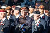 Remembrance Sunday at the Cenotaph in London 2014: Group B29 - Queen's Royal Hussars (The Queen's Own & Royal Irish). Press stand opposite the Foreign Office building, Whitehall, London SW1, London, Greater London, United Kingdom, on 09 November 2014 at 12:12, image #1846