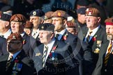 Remembrance Sunday at the Cenotaph in London 2014: Group B29 - Queen's Royal Hussars (The Queen's Own & Royal Irish). Press stand opposite the Foreign Office building, Whitehall, London SW1, London, Greater London, United Kingdom, on 09 November 2014 at 12:12, image #1847