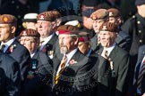 Remembrance Sunday at the Cenotaph in London 2014: Group B29 - Queen's Royal Hussars (The Queen's Own & Royal Irish). Press stand opposite the Foreign Office building, Whitehall, London SW1, London, Greater London, United Kingdom, on 09 November 2014 at 12:12, image #1848