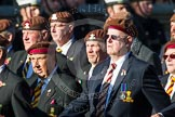 Remembrance Sunday at the Cenotaph in London 2014: Group B29 - Queen's Royal Hussars (The Queen's Own & Royal Irish). Press stand opposite the Foreign Office building, Whitehall, London SW1, London, Greater London, United Kingdom, on 09 November 2014 at 12:12, image #1855