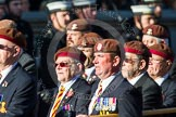 Remembrance Sunday at the Cenotaph in London 2014: Group B29 - Queen's Royal Hussars (The Queen's Own & Royal Irish). Press stand opposite the Foreign Office building, Whitehall, London SW1, London, Greater London, United Kingdom, on 09 November 2014 at 12:12, image #1856