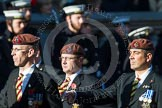 Remembrance Sunday at the Cenotaph in London 2014: Group B29 - Queen's Royal Hussars (The Queen's Own & Royal Irish). Press stand opposite the Foreign Office building, Whitehall, London SW1, London, Greater London, United Kingdom, on 09 November 2014 at 12:12, image #1859