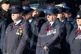 Remembrance Sunday at the Cenotaph in London 2014: Group M1 - Transport For London. Press stand opposite the Foreign Office building, Whitehall, London SW1, London, Greater London, United Kingdom, on 09 November 2014 at 12:14, image #1963