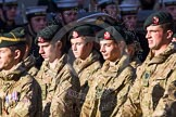Remembrance Sunday at the Cenotaph in London 2014: Group M47 - Army Cadet Force. Press stand opposite the Foreign Office building, Whitehall, London SW1, London, Greater London, United Kingdom, on 09 November 2014 at 12:21, image #2287