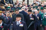 Remembrance Sunday at the Cenotaph 2015: Over 10.000 Veterans waiting for the begin of the March Past. Cenotaph, Whitehall, London SW1, London, Greater London, United Kingdom, on 08 November 2015 at 11:23, image #4