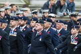 Remembrance Sunday at the Cenotaph 2015: Group B3, 3rd Regiment Royal Horse Artillery Association. Cenotaph, Whitehall, London SW1, London, Greater London, United Kingdom, on 08 November 2015 at 11:36, image #29