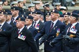 Remembrance Sunday at the Cenotaph 2015: Group B6, Royal Engineers Bomb Disposal Association (Anniversary). Cenotaph, Whitehall, London SW1, London, Greater London, United Kingdom, on 08 November 2015 at 11:37, image #48