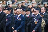 Remembrance Sunday at the Cenotaph 2015: Group B6, Royal Engineers Bomb Disposal Association (Anniversary). Cenotaph, Whitehall, London SW1, London, Greater London, United Kingdom, on 08 November 2015 at 11:37, image #51