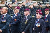 Remembrance Sunday at the Cenotaph 2015: Group B7, Airborne Engineers Association. Cenotaph, Whitehall, London SW1, London, Greater London, United Kingdom, on 08 November 2015 at 11:37, image #56