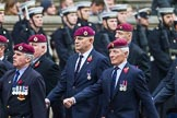 Remembrance Sunday at the Cenotaph 2015: Group B7, Airborne Engineers Association. Cenotaph, Whitehall, London SW1, London, Greater London, United Kingdom, on 08 November 2015 at 11:37, image #57