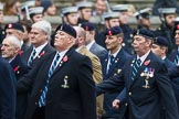 Remembrance Sunday at the Cenotaph 2015: Group B8, Royal Signals Association. Cenotaph, Whitehall, London SW1, London, Greater London, United Kingdom, on 08 November 2015 at 11:37, image #65