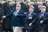 Remembrance Sunday at the Cenotaph 2015: Group B9, Army Air Corps Association. Cenotaph, Whitehall, London SW1, London, Greater London, United Kingdom, on 08 November 2015 at 11:37, image #72
