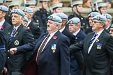 Remembrance Sunday at the Cenotaph 2015: Group B9, Army Air Corps Association. Cenotaph, Whitehall, London SW1, London, Greater London, United Kingdom, on 08 November 2015 at 11:38, image #75