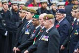 Remembrance Sunday at the Cenotaph 2015: Group B13, Royal Pioneer Corps Association (Anniversary). Cenotaph, Whitehall, London SW1, London, Greater London, United Kingdom, on 08 November 2015 at 11:39, image #104