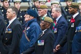 Remembrance Sunday at the Cenotaph 2015: Group B13, Royal Pioneer Corps Association (Anniversary). Cenotaph, Whitehall, London SW1, London, Greater London, United Kingdom, on 08 November 2015 at 11:39, image #105