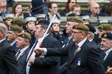 Remembrance Sunday at the Cenotaph 2015: Group B13, Royal Pioneer Corps Association (Anniversary). Cenotaph, Whitehall, London SW1, London, Greater London, United Kingdom, on 08 November 2015 at 11:39, image #106