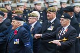 Remembrance Sunday at the Cenotaph 2015: Group B13, Royal Pioneer Corps Association (Anniversary). Cenotaph, Whitehall, London SW1, London, Greater London, United Kingdom, on 08 November 2015 at 11:39, image #112