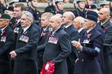 Remembrance Sunday at the Cenotaph 2015: Group B15, Royal Electrical & Mechanical Engineers Association. Cenotaph, Whitehall, London SW1, London, Greater London, United Kingdom, on 08 November 2015 at 11:39, image #123