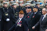 Remembrance Sunday at the Cenotaph 2015: Group B17, The RAEC and ETS Branch Association. Cenotaph, Whitehall, London SW1, London, Greater London, United Kingdom, on 08 November 2015 at 11:40, image #141