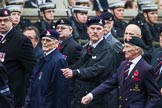 Remembrance Sunday at the Cenotaph 2015: Group B18, Royal Army Pay Corps Regimental Association. Cenotaph, Whitehall, London SW1, London, Greater London, United Kingdom, on 08 November 2015 at 11:40, image #145