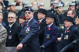 Remembrance Sunday at the Cenotaph 2015: Group B18, Royal Army Pay Corps Regimental Association, and B19, Royal Army Veterinary Corps & Royal Army Dental Corps. Cenotaph, Whitehall, London SW1, London, Greater London, United Kingdom, on 08 November 2015 at 11:40, image #147