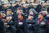 Remembrance Sunday at the Cenotaph 2015: Group B21, Queen Alexandra's Royal Army Nursing Corps Association. Cenotaph, Whitehall, London SW1, London, Greater London, United Kingdom, on 08 November 2015 at 11:40, image #166