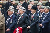 Remembrance Sunday at the Cenotaph 2015: Group B22, Royal Scots Dragoon Guards. Cenotaph, Whitehall, London SW1, London, Greater London, United Kingdom, on 08 November 2015 at 11:40, image #171