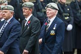 Remembrance Sunday at the Cenotaph 2015: Group B22, Royal Scots Dragoon Guards. Cenotaph, Whitehall, London SW1, London, Greater London, United Kingdom, on 08 November 2015 at 11:40, image #173