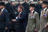 Remembrance Sunday at the Cenotaph 2015: Group B24, Queen's Royal Hussars (The Queen's Own & Royal Irish). Cenotaph, Whitehall, London SW1, London, Greater London, United Kingdom, on 08 November 2015 at 11:41, image #185
