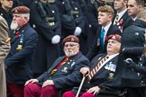 Remembrance Sunday at the Cenotaph 2015: Group B25, Kings Royal Hussars Regimental Association. Cenotaph, Whitehall, London SW1, London, Greater London, United Kingdom, on 08 November 2015 at 11:41, image #187