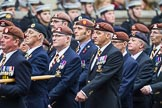 Remembrance Sunday at the Cenotaph 2015: Group B25, Kings Royal Hussars Regimental Association. Cenotaph, Whitehall, London SW1, London, Greater London, United Kingdom, on 08 November 2015 at 11:41, image #195