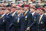 Remembrance Sunday at the Cenotaph 2015: Group B25, Kings Royal Hussars Regimental Association. Cenotaph, Whitehall, London SW1, London, Greater London, United Kingdom, on 08 November 2015 at 11:41, image #198