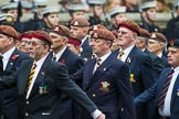 Remembrance Sunday at the Cenotaph 2015: Group B25, Kings Royal Hussars Regimental Association. Cenotaph, Whitehall, London SW1, London, Greater London, United Kingdom, on 08 November 2015 at 11:41, image #200