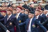 Remembrance Sunday at the Cenotaph 2015: Group B25, Kings Royal Hussars Regimental Association. Cenotaph, Whitehall, London SW1, London, Greater London, United Kingdom, on 08 November 2015 at 11:41, image #201
