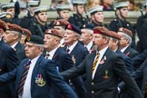 Remembrance Sunday at the Cenotaph 2015: Group B25, Kings Royal Hussars Regimental Association. Cenotaph, Whitehall, London SW1, London, Greater London, United Kingdom, on 08 November 2015 at 11:41, image #202