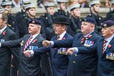 Remembrance Sunday at the Cenotaph 2015: Group B28, The Royal Lancers (New for 2015). Cenotaph, Whitehall, London SW1, London, Greater London, United Kingdom, on 08 November 2015 at 11:42, image #222