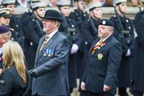Remembrance Sunday at the Cenotaph 2015: Group B28, The Royal Lancers (New for 2015). Cenotaph, Whitehall, London SW1, London, Greater London, United Kingdom, on 08 November 2015 at 11:42, image #224