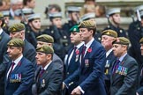 Remembrance Sunday at the Cenotaph 2015: Group B34, Special Observers Association. Cenotaph, Whitehall, London SW1, London, Greater London, United Kingdom, on 08 November 2015 at 11:43, image #261