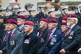 Remembrance Sunday at the Cenotaph 2015: Group B35, The Parachute Squadron Royal Armoured Corps (New for 2015). Cenotaph, Whitehall, London SW1, London, Greater London, United Kingdom, on 08 November 2015 at 11:43, image #265