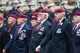 Remembrance Sunday at the Cenotaph 2015: Group B35, The Parachute Squadron Royal Armoured Corps (New for 2015). Cenotaph, Whitehall, London SW1, London, Greater London, United Kingdom, on 08 November 2015 at 11:43, image #266