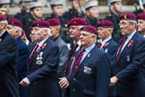 Remembrance Sunday at the Cenotaph 2015: Group B35, The Parachute Squadron Royal Armoured Corps (New for 2015). Cenotaph, Whitehall, London SW1, London, Greater London, United Kingdom, on 08 November 2015 at 11:43, image #267