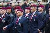 Remembrance Sunday at the Cenotaph 2015: Group B35, The Parachute Squadron Royal Armoured Corps (New for 2015). Cenotaph, Whitehall, London SW1, London, Greater London, United Kingdom, on 08 November 2015 at 11:43, image #268