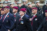 Remembrance Sunday at the Cenotaph 2015: Group B35, The Parachute Squadron Royal Armoured Corps (New for 2015). Cenotaph, Whitehall, London SW1, London, Greater London, United Kingdom, on 08 November 2015 at 11:43, image #269
