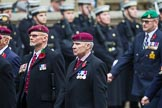 Remembrance Sunday at the Cenotaph 2015: Group B35, The Parachute Squadron Royal Armoured Corps (New for 2015). Cenotaph, Whitehall, London SW1, London, Greater London, United Kingdom, on 08 November 2015 at 11:43, image #270