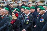 Remembrance Sunday at the Cenotaph 2015: Group B36, Intelligence Corps Association. Cenotaph, Whitehall, London SW1, London, Greater London, United Kingdom, on 08 November 2015 at 11:43, image #275